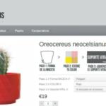 MyCoolCactus en la tendencia de la personalización en ecommerce