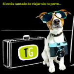 Travelguau crea el carné de perro educado
