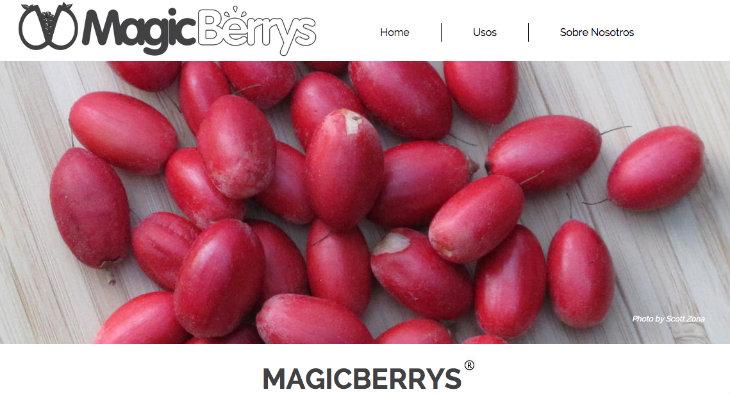 magicberrys