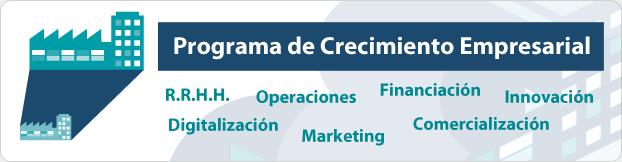 Programa de asesoramiento para Pymes en Innovación y Digitalización