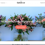 Descubre el ecommerce de flores The Colvin Co