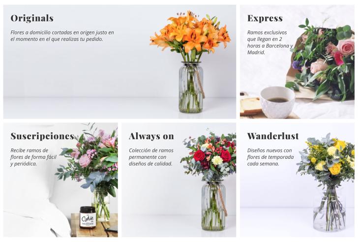 2 millones de euros de inversión en la floristería online Colvin