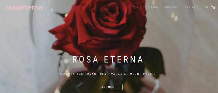 Entrevistamos a Rosaeterna, un interesante ecommerce de nicho