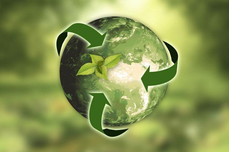 Sostenibilidad en la empresa: claves para que tu negocio sea sostenible